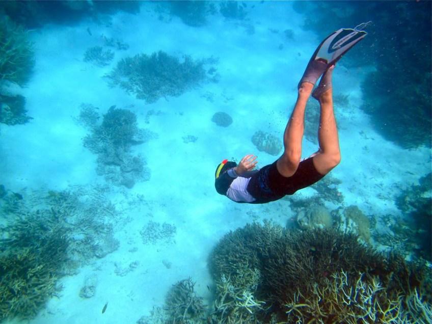 Maldives under water