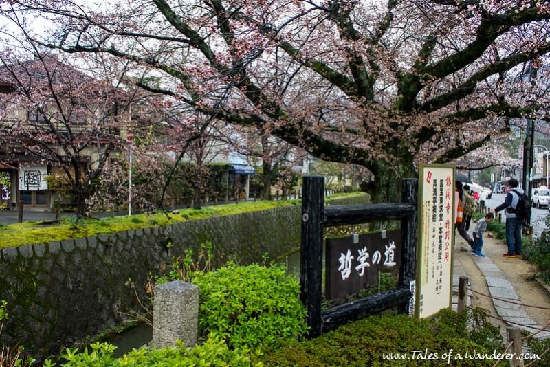 京都 KYŌTO - 哲学の道 Tetsugaku-no-michi