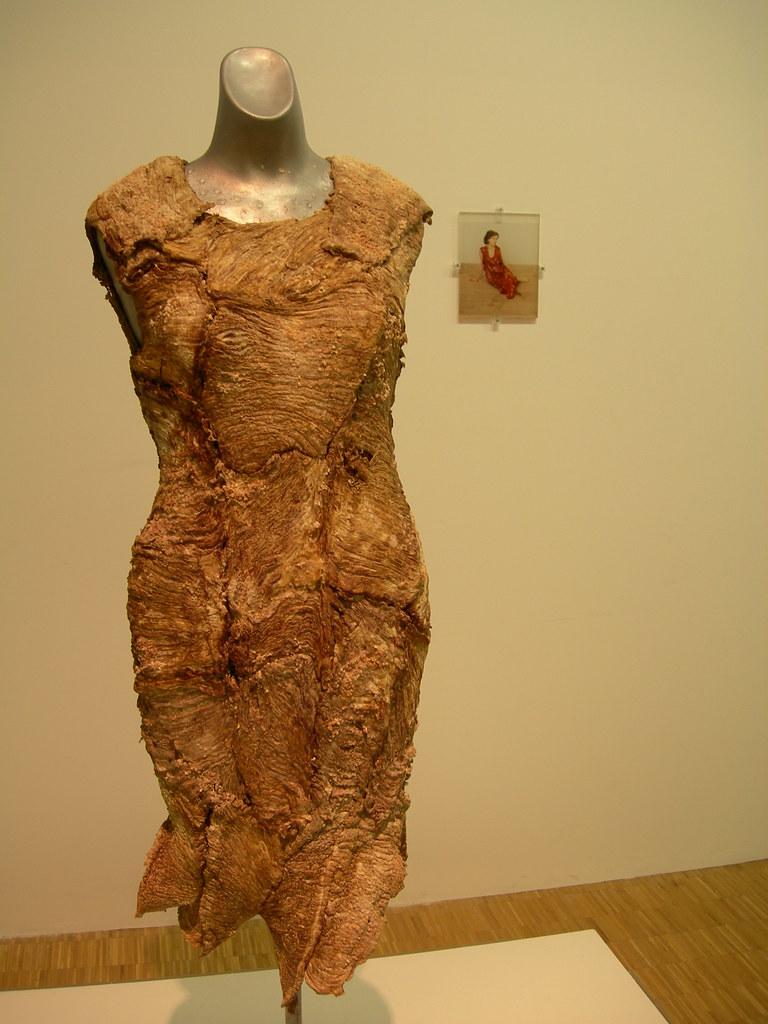Meat dress  Jana Sterbak Vanitas Robe de chair pour