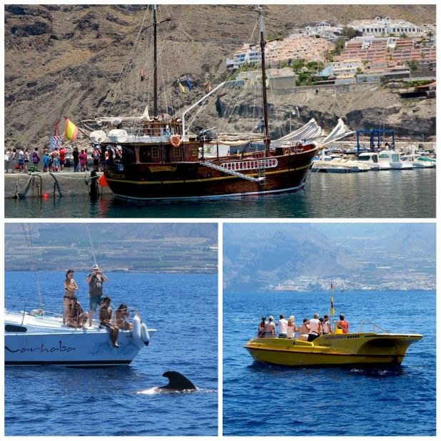 Barcos Los Gigantes Tenerife
