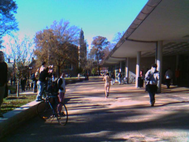 Streaking through campus  Washington University in St