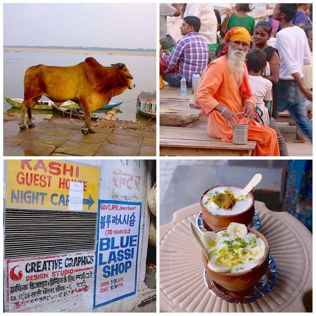 Blue Lassi Varanasi