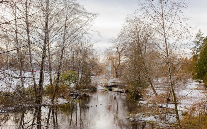 Snowy Stanley Park