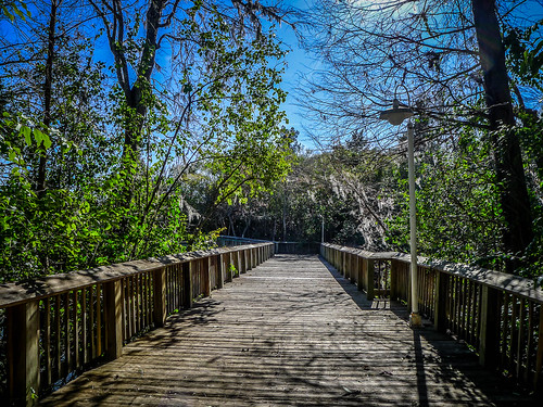 Old Santee Canal Park-129