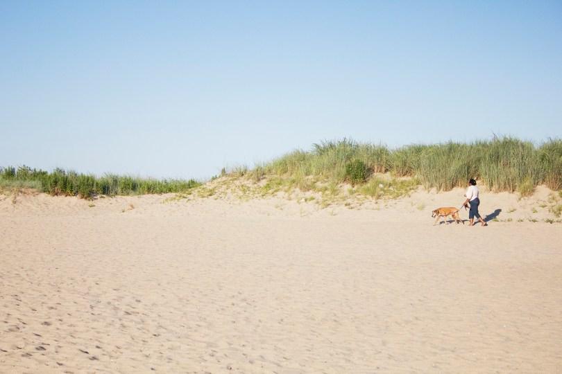 historic-delaware-dog-walk-lewes-beach