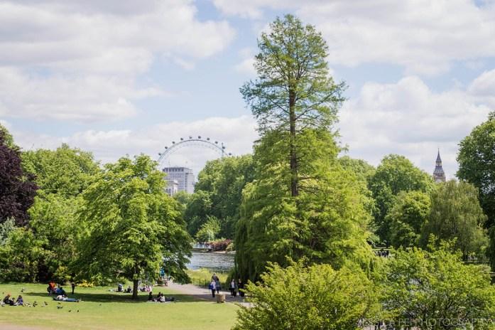 St. James's Park London Eye