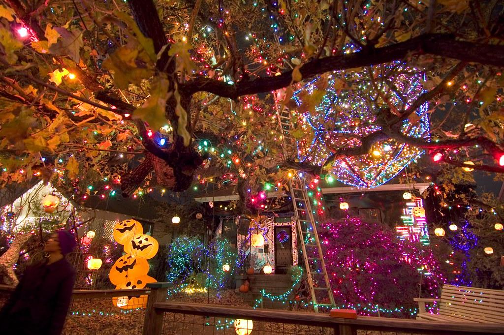 hippie lights 3  37th street hippie christmas lights