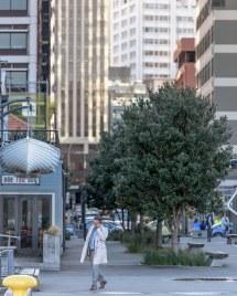Wellington Zealand City Life. 30 July 2015