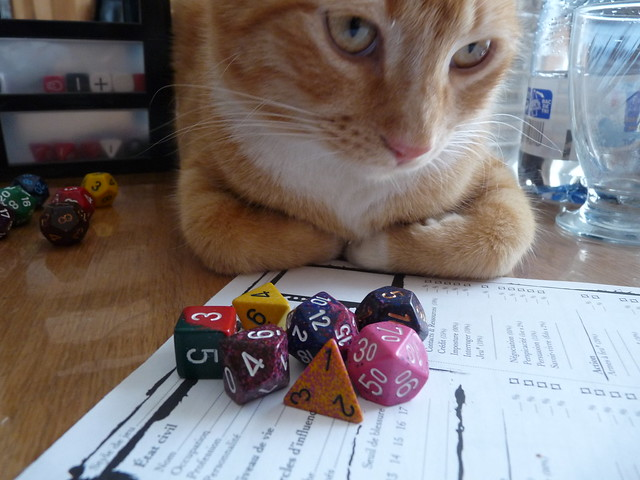 Cat and Dice
