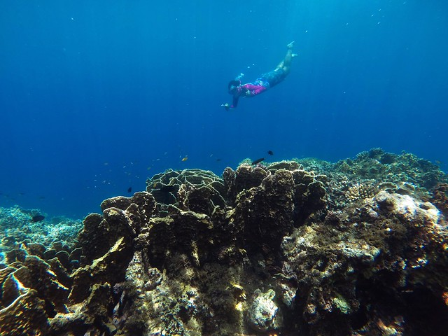 Snorkeling at the Mouth of Bojo River