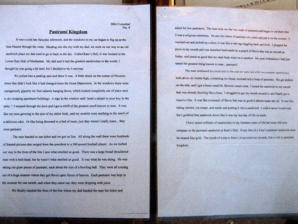 Essay On Safety Essay Katz S Delicatessen Cute Essay Zoom In To