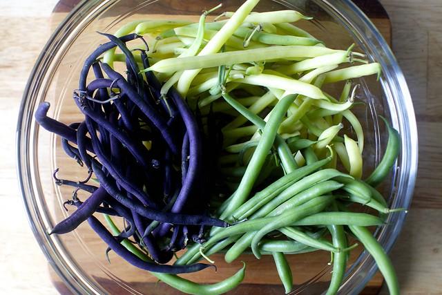 a rainbow of beans