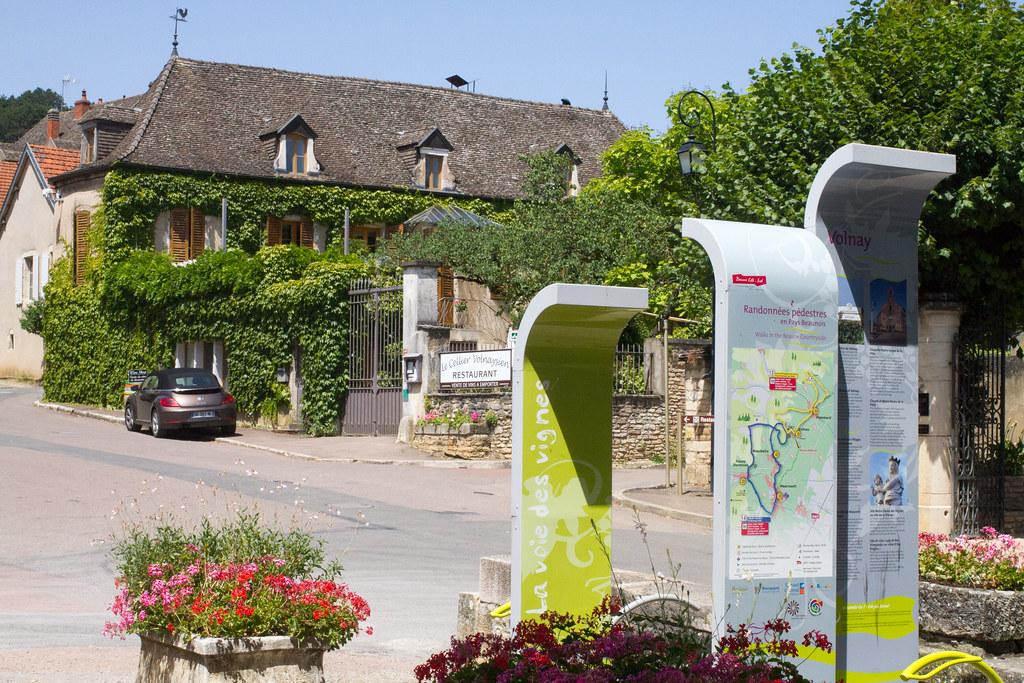 Côte de Beaune_20072016-_MG_8117