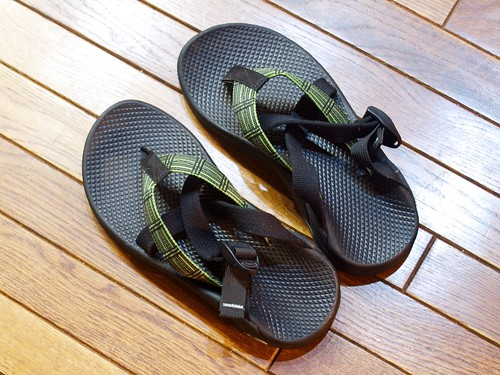 Chaco Hipthong Two
