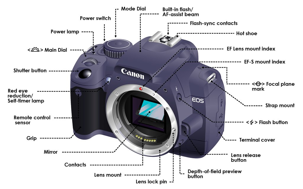 slr camera diagram gm 10si alternator wiring dslr functions this infographic sho flickr by gurucamera