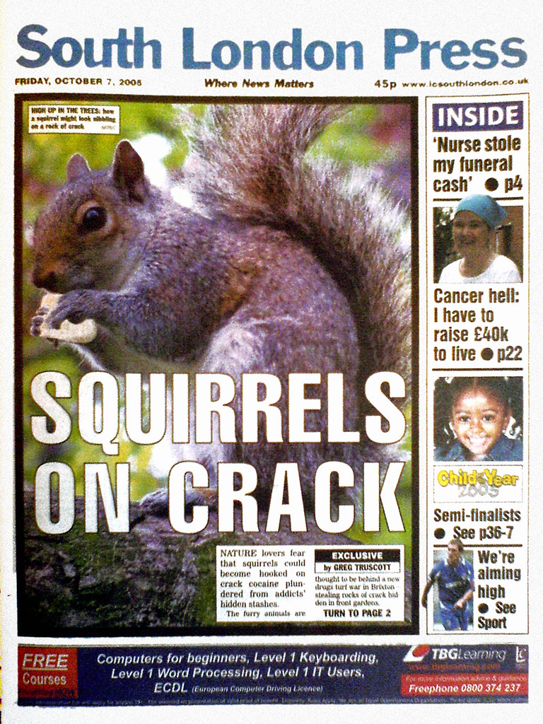 Squirrels on Crack  It was only a matter of time
