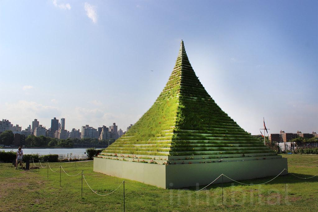 Agnes Denes The Living Pyramid  Agnes Denes Living