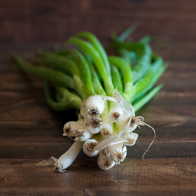 Summer recipes and ideas for the farmers market or your CSA