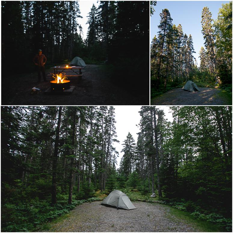 acadia national park // seawall campground