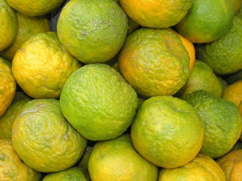 Narangees Indian Oranges New Delhi India  pavanblogcom  Flickr