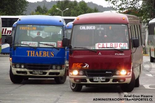 Terminal Puerto Montt - Thaebus & Buses San Carlos