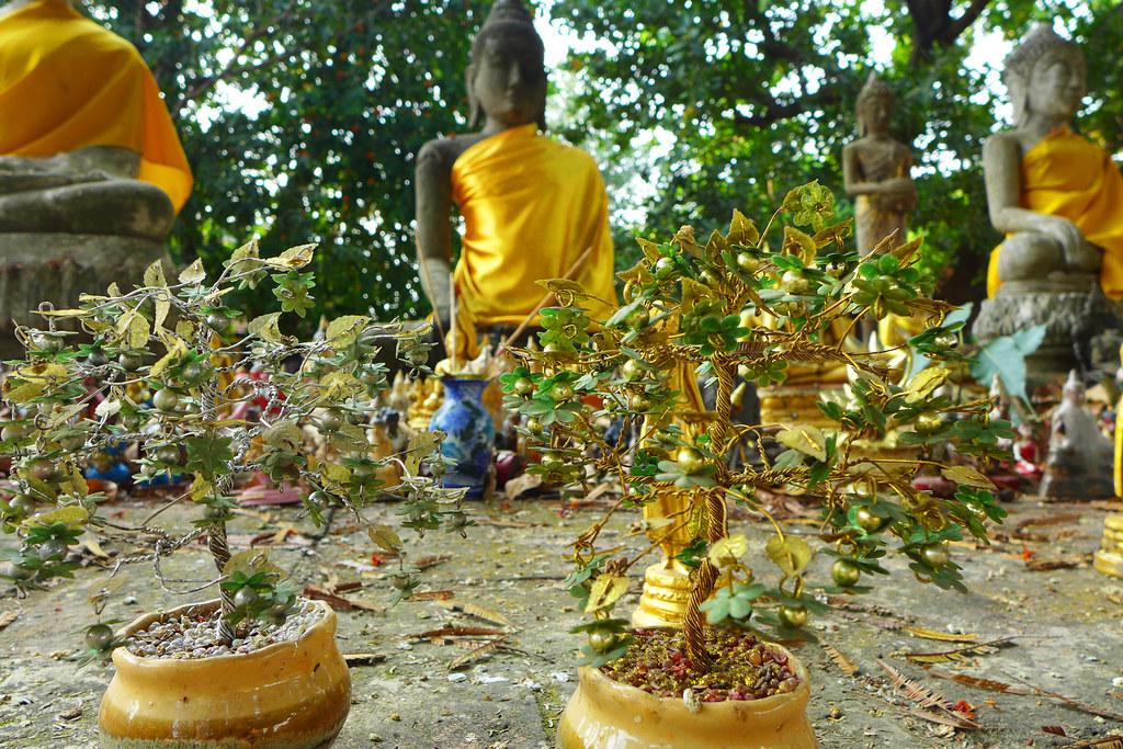 Thaïlande - Ayutthaya - 206 - Wat Yai Chai Mongkhon