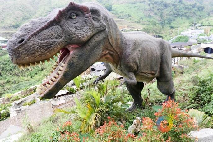 Dinosaur's Island Baguio-81.jpg