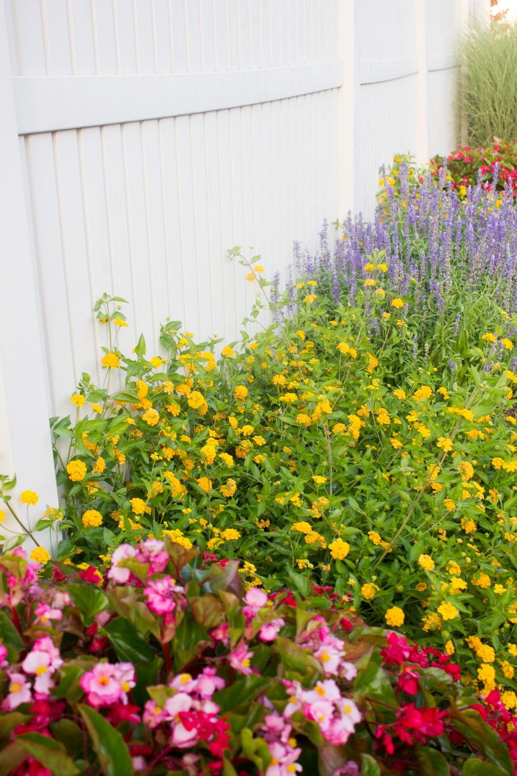 historic-delaware-flowers-gate-lewes