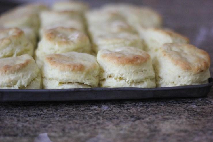 Corn Milk Biscuits 6 (1 of 1)