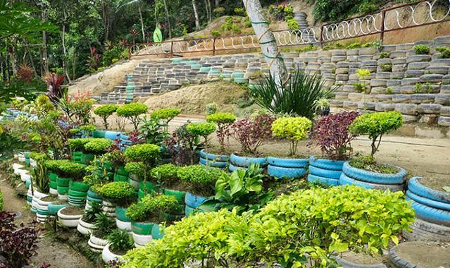 Parque-Ecológico-do-Vidigal-fotos-Mariana-Reis-post-1