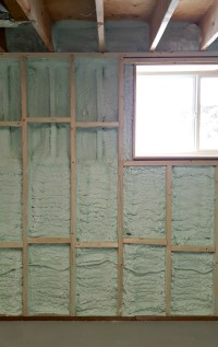 Turtles and Tails: Basement Wall Framing & Insulating