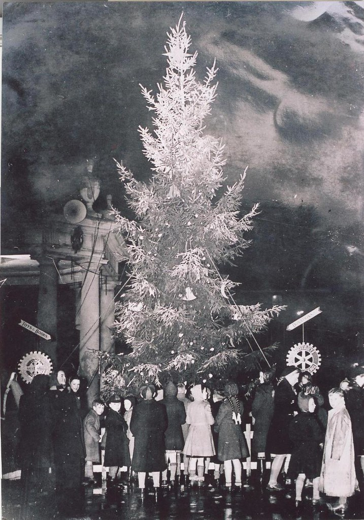 Beverley Rotary Club Christmas Tree 1949 Archive Ref DDX