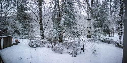 2017 Greenville Snow (16 of 18)
