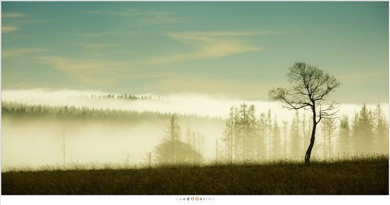 De mist in de dalen, ver weg (200mm; ISO100; f/8; t=1/5000sec)