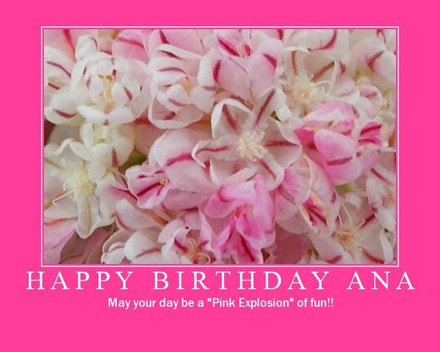 Happy Birthday Ana Stop By And Wish Ana Maria A Happy
