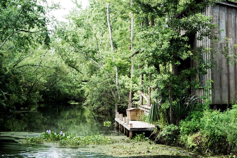 bayou-new-orleans-swamp-tour-house-greenery-flowers