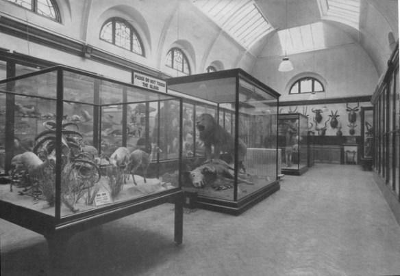 Dorman Memorial Museum - Photo 1
