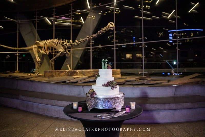 dallas_perot_museum_wedding_0029