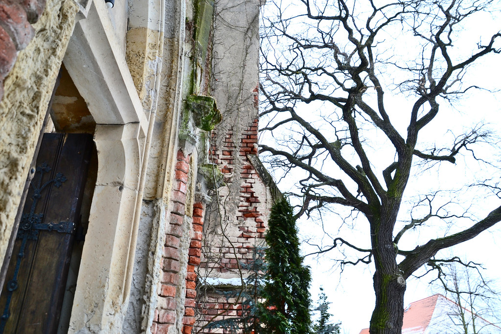 Kirchenruine Wachau #4