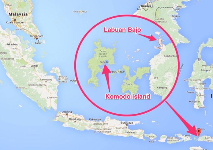 The ultimate guide to Komodo islands and Flores ...