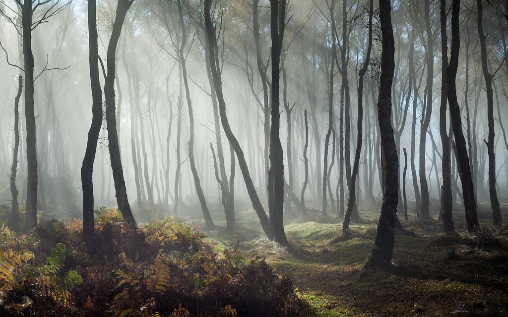 Free Hd Fall Wallpaper Dreamy Bolehill 3 Peak District Uk James Mills Flickr