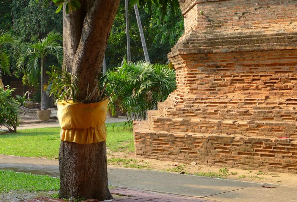 Thaïlande - Ayutthaya - 204 - Wat Yai Chai Mongkhon
