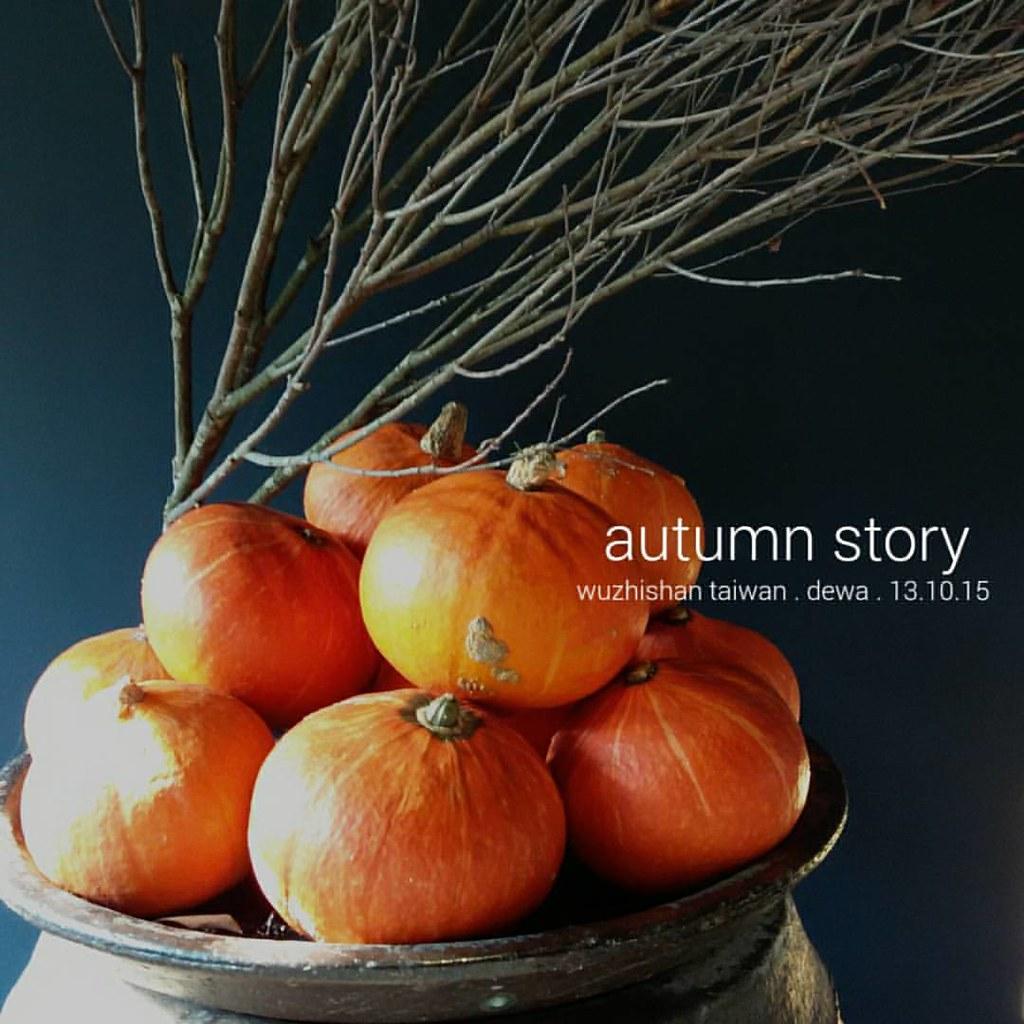 Autumn Story Starring Pumpkin Pumpernickle Twiggy Twi
