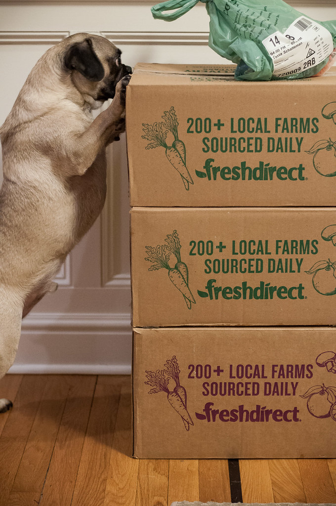 What I loved (and didn't) about Fresh Direct