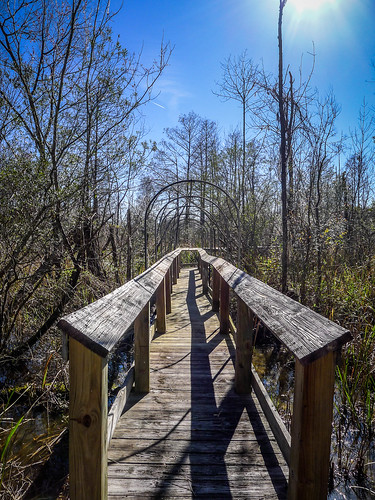 Old Santee Canal Park-117