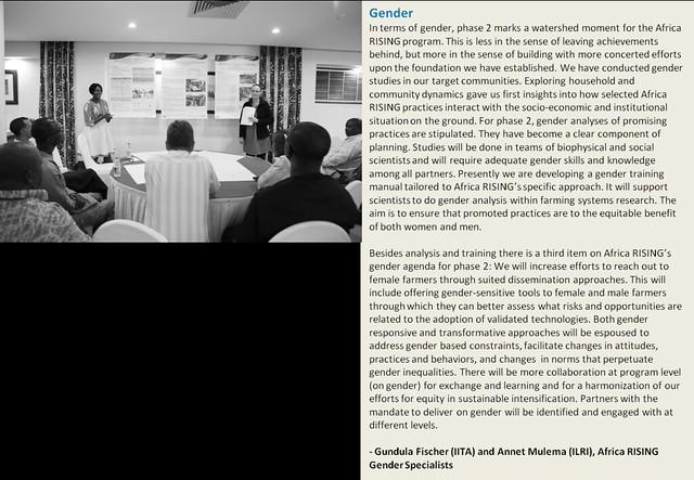 Africa RISING phase 2 - the gender roadmap