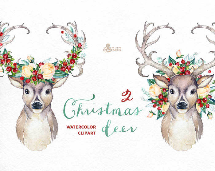 Christmas Deer 2 Watercolor Deers Antlers Flowers Hand