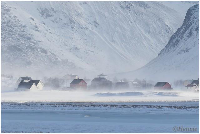soms zie je de huizen door de stuifsneeuw niet meer zien.