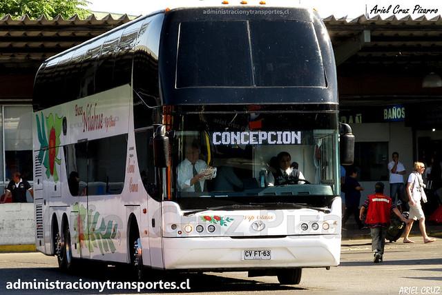 Buses Nilahue | Santiago | Youngman Skyliner / CVFT63