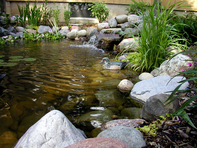 Building Yard Pond